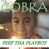 Peep Tha Playboy by Cobra