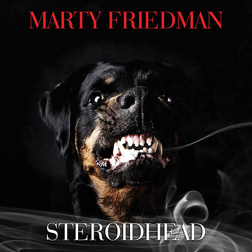 Steroidhead by Marty Friedman
