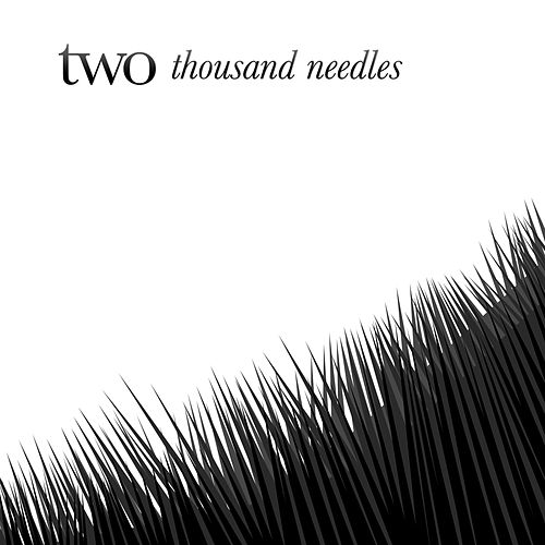 Thousand Needles - Single by Two