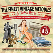 The Finest Vintage Melodies & Retro Tunes Vol. 15 by Various Artists