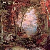 Bach: Toccata and Fugue - Pachelbel: Canon in D - Beethoven: Fur Elise - Liszt: La Campanella - Chopin: Waltzes & Impromptu - Sinding: Rustle of Spring - Mendelssohn: Wedding March - Wagner: Bridal Chorus - Schubert: Ave Maria - Walter Rinaldi: Works by Walter Rinaldi