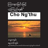 Cho Ng'thu New Testament (Dramatized) Common Langauage Version - Chin Tiddim Bible by The Bible