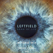 Song of Life by Leftfield