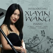 Introducing Xiayin Wang by Xiayin Wang