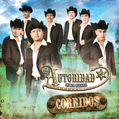 Corridos by La Autoridad De La Sierra