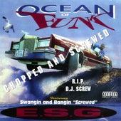 Ocean of Funk by E.S.G.