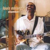 Shamwari by Louis Mhlanga