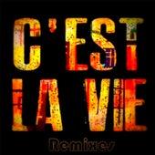 C'est La Vie (Remixes) von Khaled (Rai)