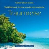 Traumreise: Wundervolle Wohlfühlmusik by Gomer Edwin Evans