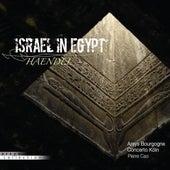 Haendel: Israel in Egypt by Various Artists