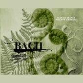 Bach: Sonaten für Violine und Cembalo by Various Artists