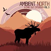 Ambient North - A Chill Out Excursion, Vol. 3 by Various Artists