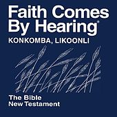 Konkomba Likoonli New Testament (Non-Dramatized) by The Bible