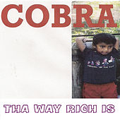 Tha Way Rich Is von Cobra