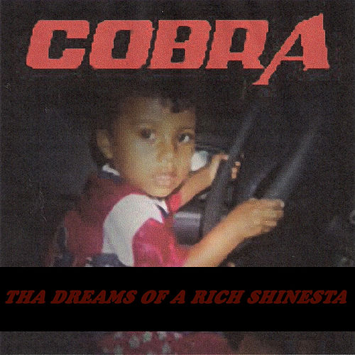 Tha Dreams of a Rich Shinesta by Cobra