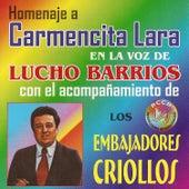 Homenaje a Carmencita Lara by Lucho Barrios