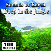 Sounds of Earth: Deep in the Jungle by Nature Sounds BLOCKED