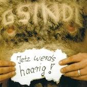 Jetz Werds Haarig! by Gsindl