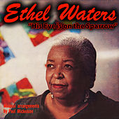 His Eye Is on the Sparrow von Ethel Waters
