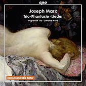 Marx: Trio-Phantasie & 4 Lieder by Various Artists