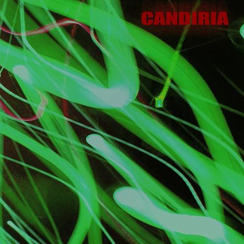 Invaders 7 Inch by Candiria
