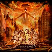 Storm of Flames by Hate Storm Annihilation