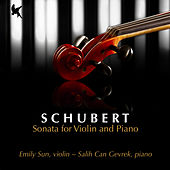 Schubert: Sonata for Violin and Piano in G Minor, D. 408 by Salih Can Gevrek