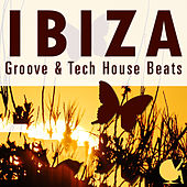Ibiza Groove & Tech House Beats by Various Artists