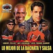Lo Mejor de la Bachata y Salsa by Various Artists