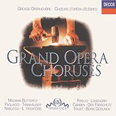 Beethoven / Bellini / Bizet / Verdi etc.: Great Opera Choruses. by Various Artists