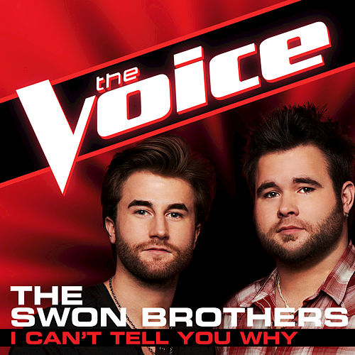 I Can't Tell You Why by The Swon Brothers