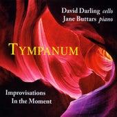 Tympanum by David Darling