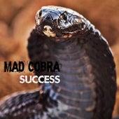 Success by Mad Cobra