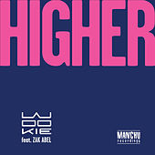 Higher (Remixes) by Wookie