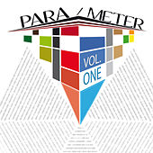 Para/meter, Vol. 1 by Various Artists