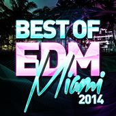 Best Of EDM - Miami 2014 - EP by Various Artists