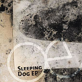 Sleeping Dog EP by echoecho