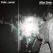 After Dark by Felix Cartal