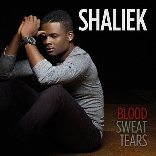 Blood Sweat Tears by Shaliek