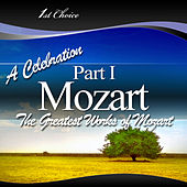 250 Minutes of Mozart: Part I by Various Artists