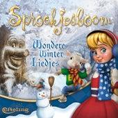 Efteling - Sprookjesboom Wondere Winterliedjes by Various Artists