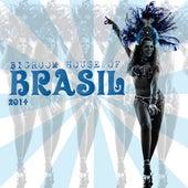 Bigroom House of Brasil 2014 by Various Artists