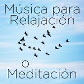 Musica para Relajación o Meditación: 30 Canciones by Richard Clayderman