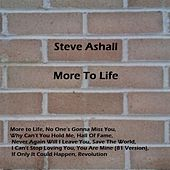 More to Life by Steve Ashall