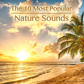 The 10 Most Popular Nature Sounds by Nature Sounds Nature Music