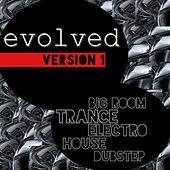 Evolved, Version 1 by Various Artists