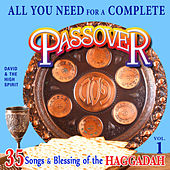 All You Need for a Complete Passover, Vol. 1 by David & The High Spirit