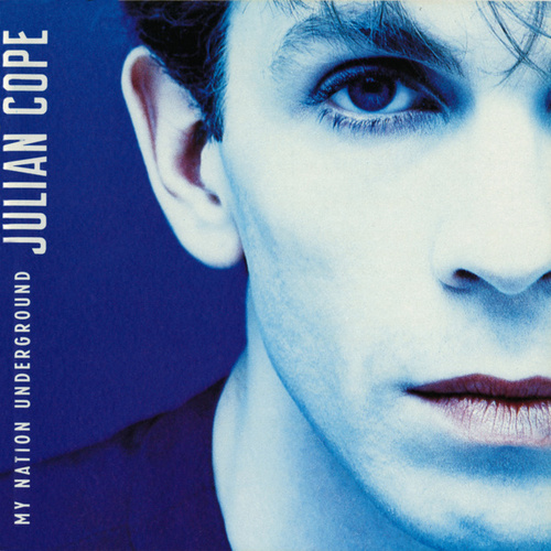 My Nation Underground by Julian Cope