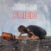Fried by Julian Cope