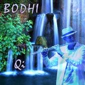 Qi by Bodhi